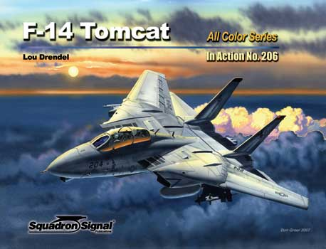 F-14 TOMCAT COLOR IN ACTION