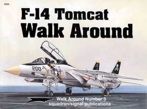 F-14 TOMCAT WALK AROUND