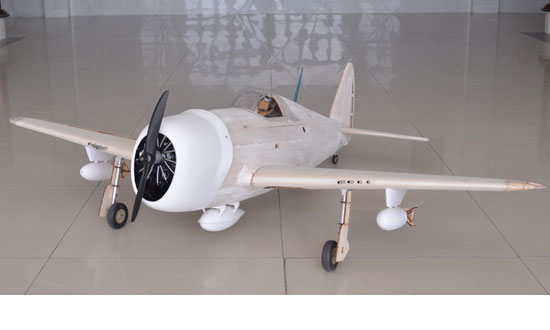 P-47 Thunderbolt MASTER SCALE KIT EDITION