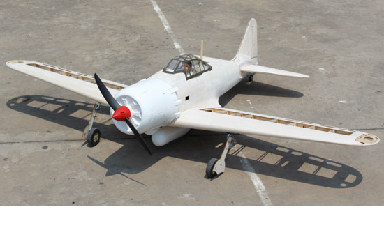 A6M2 ZERO MASTER SCALE KIT EDITION